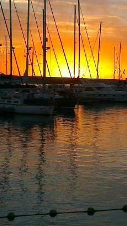 Rubimar Suite ApartHotel: My evening drink view at the marina tavern