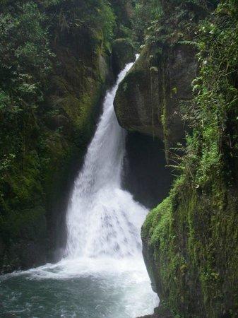 Actuar: Cascade de San Gerardo de Dota