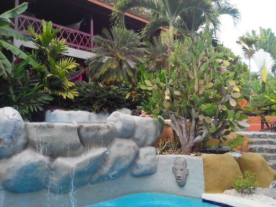 Hotel El Jardin: Piscine