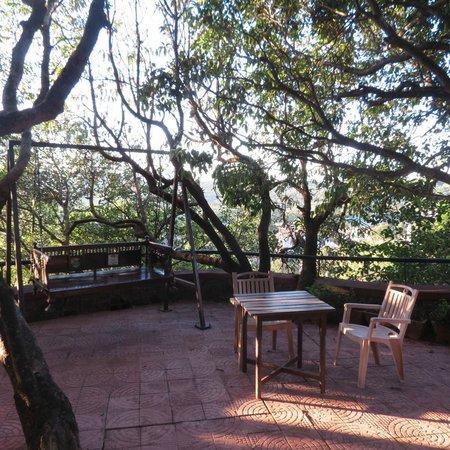 Ramsukh Resorts & Spa: A swing amid thick foliage..take a book or take a nap