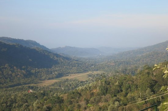 SpiceTree Munnar: view from the hotel grounds
