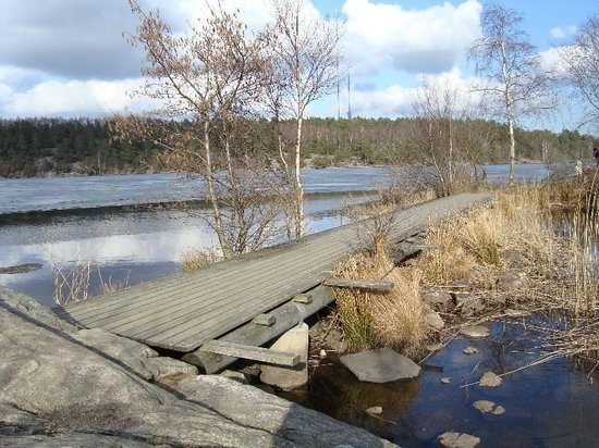 Delsjön: Inverno