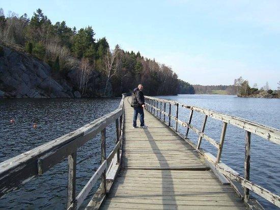 Delsjön : Ponte