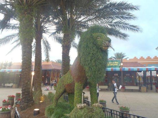 Busch Gardens : where we came in