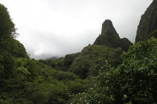 Iao Valley State Monument: The needle