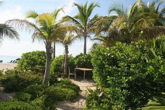 Marenas Beach Resort : Entrance from beach