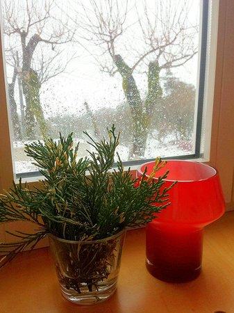 Casa das Penhas Douradas: Neve lá fora