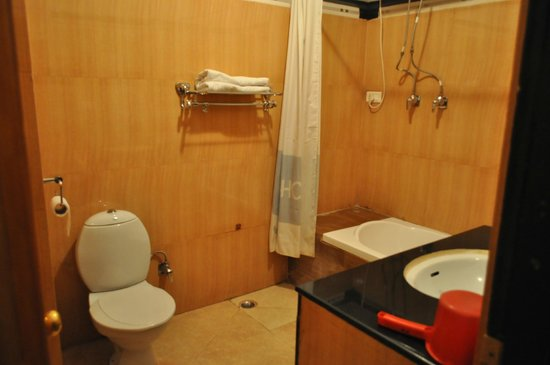 Hotel Sonam: Bathroom was clean and hot water was always available