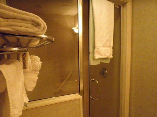Radisson Resort at the Port: Walk-in shower (just like a sauna!)