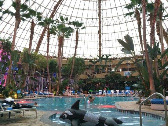 Harrah's Resort Atlantic City: Indoor Pool Area