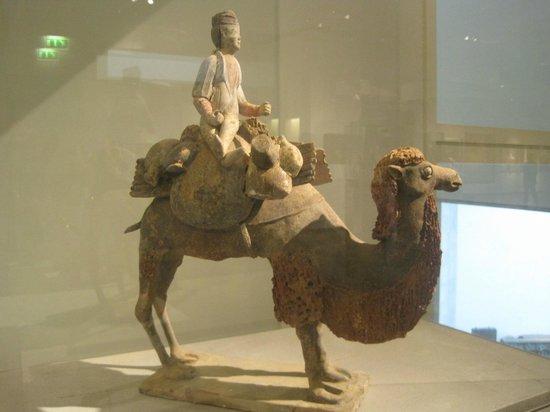 Musée National des Arts Asiatiques - Guimet : cammelliere, epoca Tang, Cina del nord