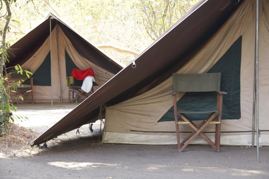 Selous River Camp : Tents for budget