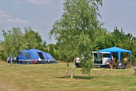 Camping Le Fief Angibaud : Rear field