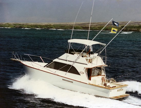 Medusa Sportfishing - Private Charters