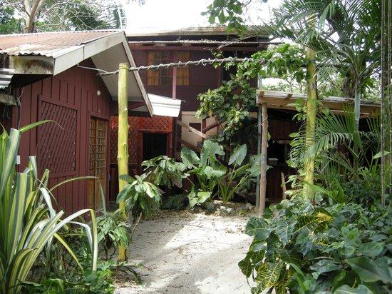 Hotel Casa Valeria Samara: le camere sono piccoli bungalow