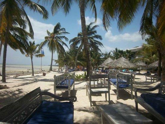 Eden Village Watamu Beach : Vista dal bar della spiaggia