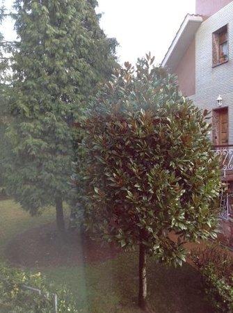Ayre Hotel Alfonso II: vistas habitacion 211
