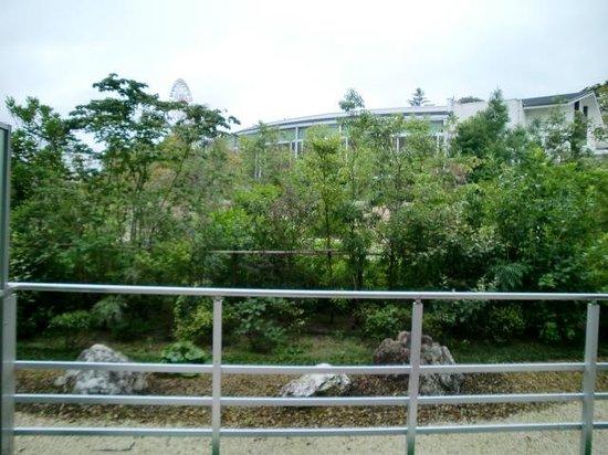 Hotel Wellseason Hamanako : お庭
