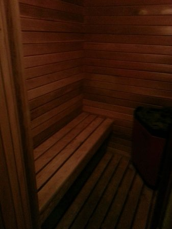 Park Place Bed & Breakfast : Sauna
