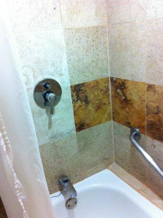 Plaza Pelicanos Club Beach Resort : shower and bath tub