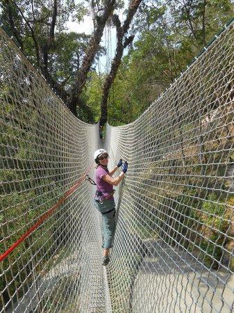 Jungle Xtrem Adventures Park: So Fun!