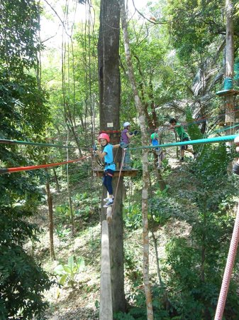 Jungle Xtrem Adventures Park: The kids were brave!