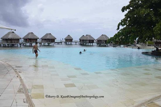Manava Beach Resort & Spa - Moorea: The infinity pool at the Moorea Pearl resort