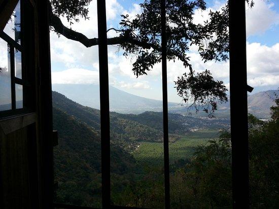 Earth Lodge Tree House view