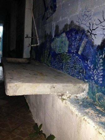 Graffiti Playa Hostel: Frente a la habitación