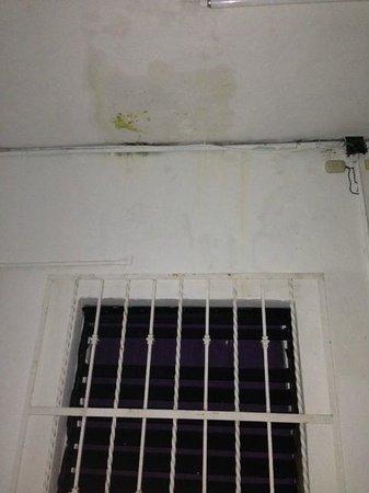 Graffiti Playa Hostel : Húmedad en los pasillos