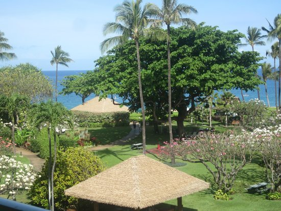 Kaanapali Beach Hotel : View from our room