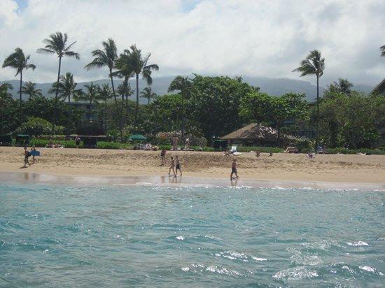 Kaanapali Beach Hotel : view of beach