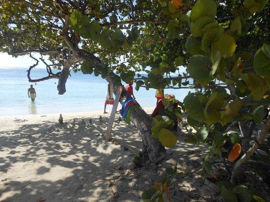 Le Chatrou : la plage de Pointe Marin