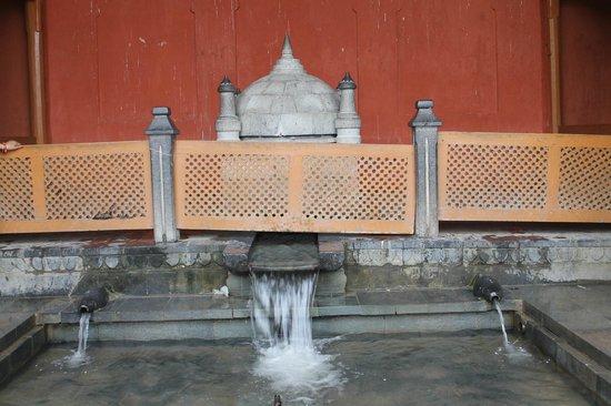 Chashme Shahi Gardens : Water of Chasme Sahi