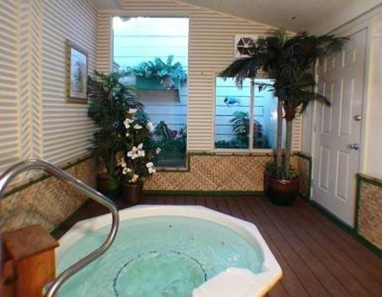 Oasis Hot Tub Gardens: Indoor Atrium