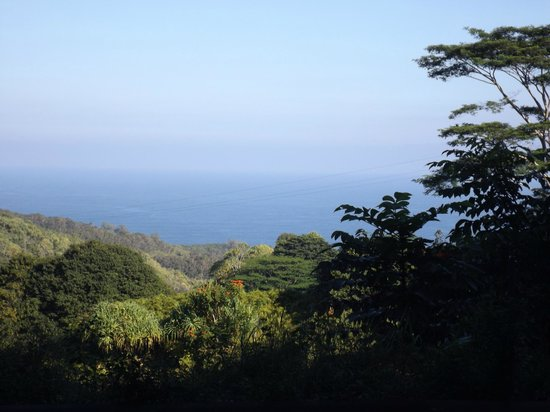 Mahalo Tours: One of the views along the Road to Hana