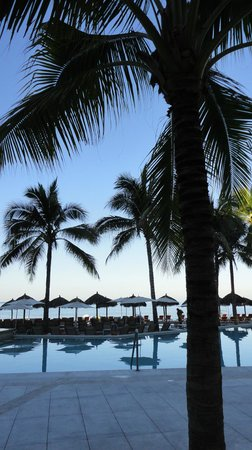 Now Amber Puerto Vallarta: Love Palm Trees