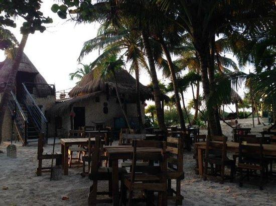 Playa Esperanza: Vista desde el restaurante
