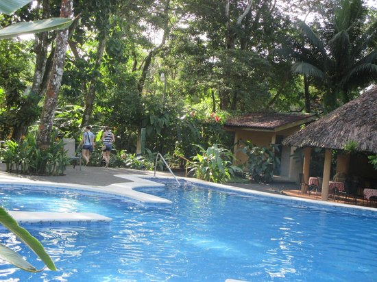 Laguna Lodge Tortuguero: The pool and surrounding area.