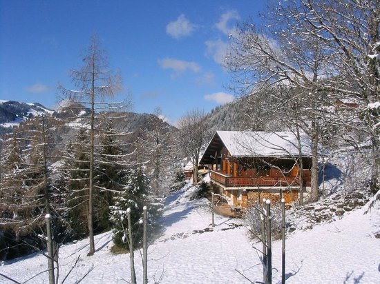 Chalet Fan La Bise: Fan La Bise in the snow