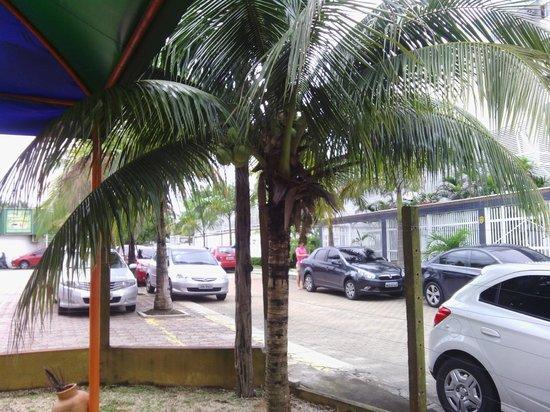 Cafe Regional Tapiri: Estacionamento