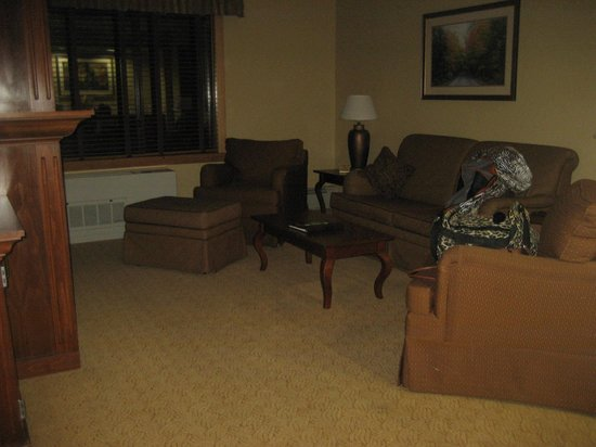Grand Portage Lodge and Casino: Living Area