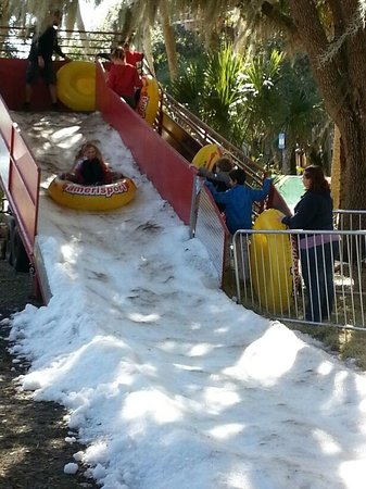 Myakka River State Park: snow hill in frost fest