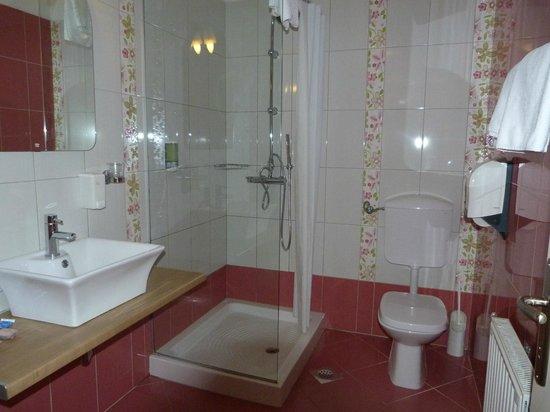 Vodisek Hotel: Hotel Vodisek, Koper