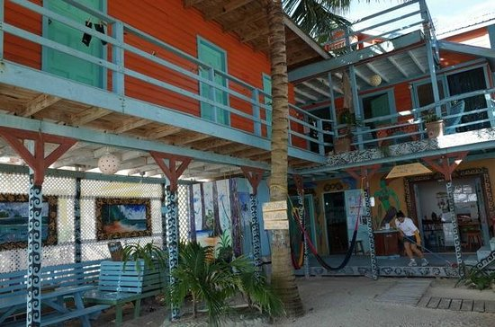 Yuma's House Belize : View from courtyard