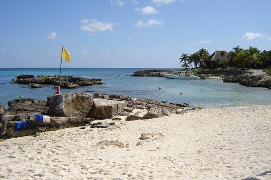 Grand Sirenis Riviera Maya Resort & Spa : Dive centre in the backround