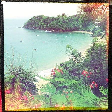 Castara Retreats : Castara Bay from Coasthanger Lodge