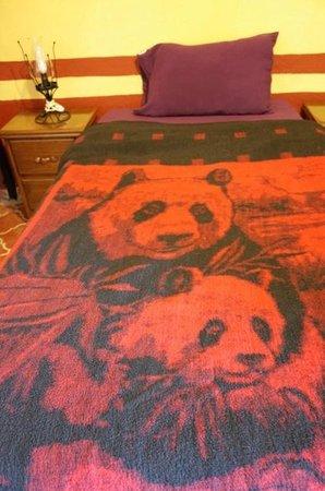 Casa de Dante Hostel: Room single bed