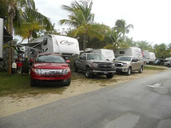 Boyd's Key West Campground : Crowded sites