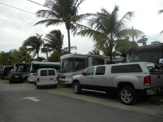 Boyd's Key West Campground: Vehicles barely off the road